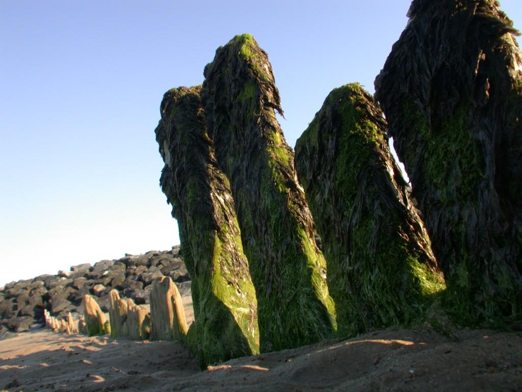 Blocks of stone